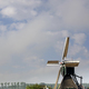 Horses in front of a windmill - PhotoDune Item for Sale