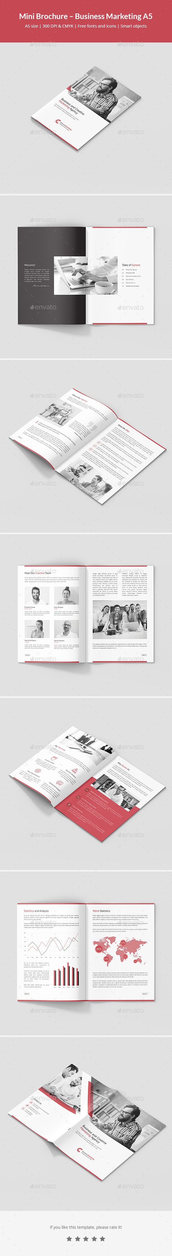 Mini Brochure – Business Marketing A5 - Corporate Brochures