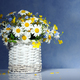 Basket with spring flowers - PhotoDune Item for Sale