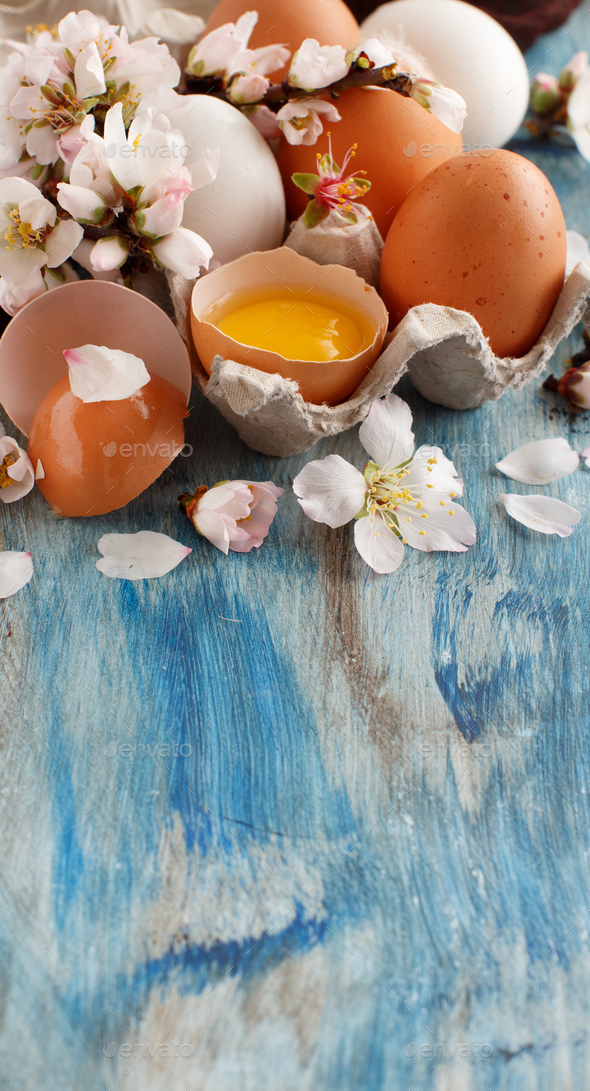 Сhicken eggs and almond flowers - Stock Photo - Images