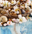 Quail eggs and almond flowers - PhotoDune Item for Sale