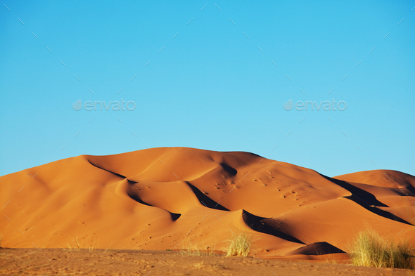 Sahara desert - Stock Photo - Images