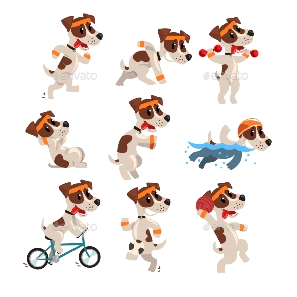 Cute Sportive Jack Russell Terrier Set, Funny Pet - Animals Characters