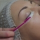 Eyelash Extension Procedure. Woman Eye with Long Eyelashes. - VideoHive Item for Sale