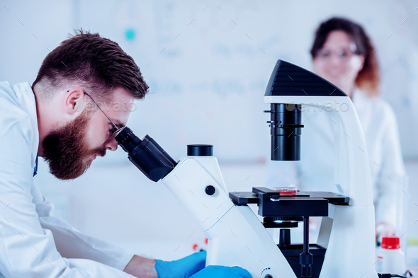 Young Scientists Working In The Laboratory - Stock Photo - Images