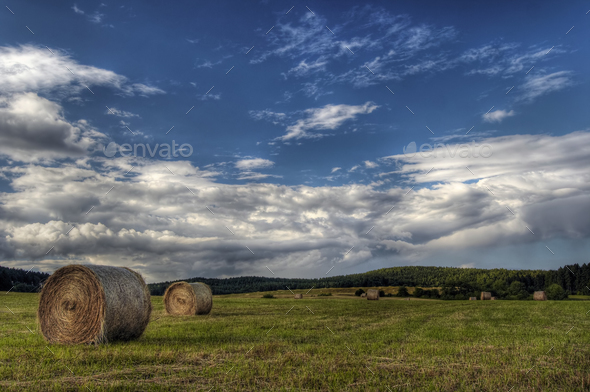 Haymaking time - Stock Photo - Images