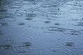 Rain - rings on water - PhotoDune Item for Sale