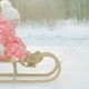 Happy Little Boy on the Sledge in the Winter Park - VideoHive Item for Sale