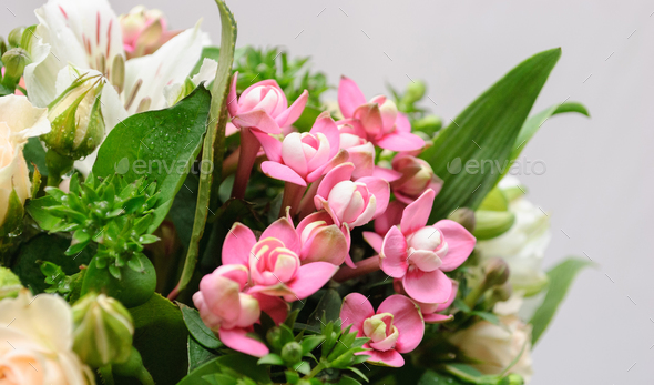 close up of greeting bouquet - Stock Photo - Images