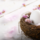 Egg in the nest with pink flowers and feather on white table - PhotoDune Item for Sale
