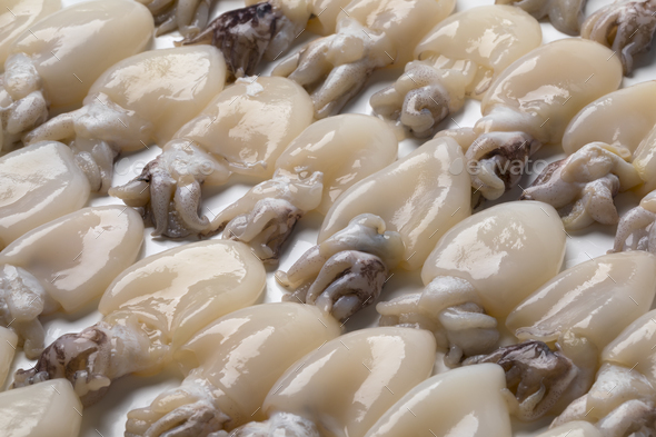 Fresh baby squid - Stock Photo - Images