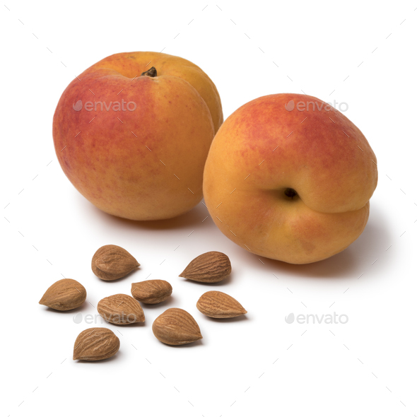 Dried apricot stones with fresh apricots in the background - Stock Photo - Images