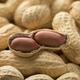 Peeled peanuts close up - PhotoDune Item for Sale