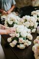 Flowers arranging - PhotoDune Item for Sale