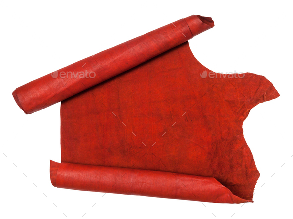 unrolled scroll from red hide isolated on white - Stock Photo - Images