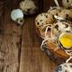 Quail eggs close up - PhotoDune Item for Sale