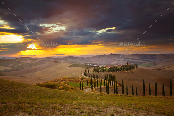 Tuscany - Landscape panorama, hills and meadow, Toscana - Italy - Stock Photo - Images