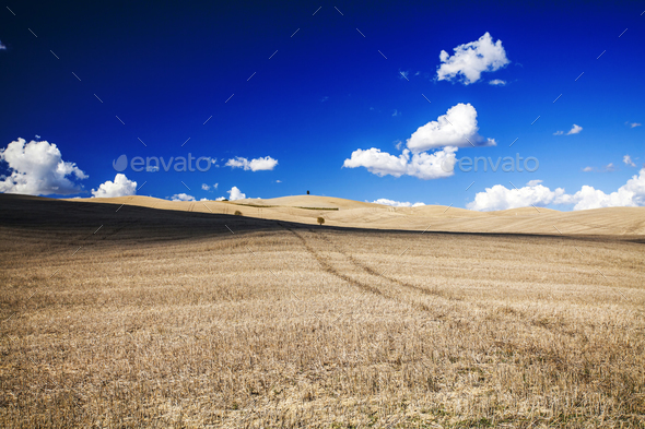 Tuscany - Landscape panorama, hills and meadow - Stock Photo - Images