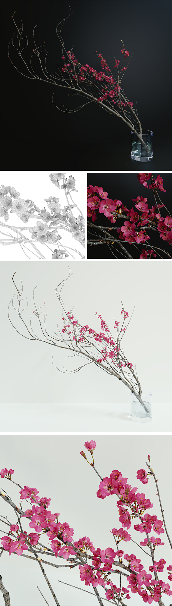 Decorative branch with flowers of sakura - 3DOcean Item for Sale