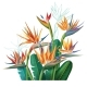 Floral Bouquet with Strelitzia Flowers - GraphicRiver Item for Sale