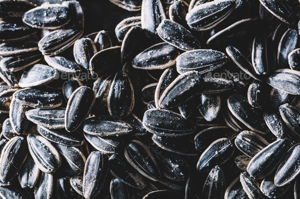 A pile of little black sunflower seeds. - Stock Photo - Images