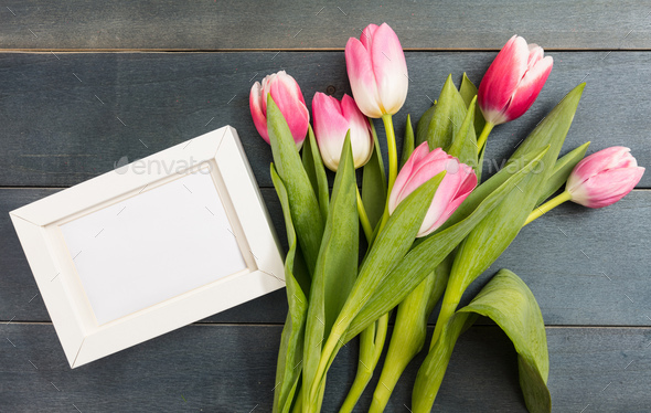 Mother's day. Pink tulips and a white blank frame on blue background, copy space, top view - Stock Photo - Images