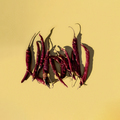 Chili Peppers Shadows - PhotoDune Item for Sale