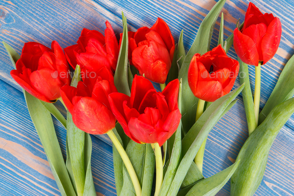 Bouquet of fresh tulips on blue boards, spring decoration - Stock Photo - Images