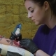 Brunette Female Tattooer in Violet Clothing Making Tattoo on the Man's Arm of Her Client with Gun in - VideoHive Item for Sale