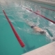 Male Athlete Swims in the Pool - VideoHive Item for Sale