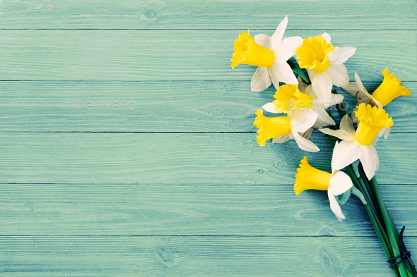 Daffodils background - Stock Photo - Images
