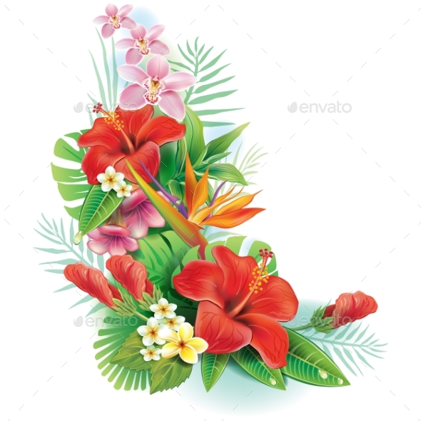 Arrangement From Tropical Flowers by Wikki33 | GraphicRiver