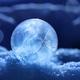 Magic of winter, - PhotoDune Item for Sale