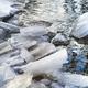 ice in river - PhotoDune Item for Sale
