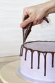 cake of chocolate - PhotoDune Item for Sale
