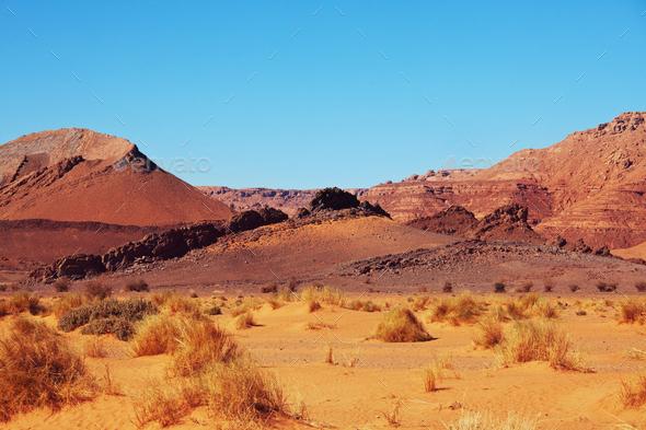 Sand desert - Stock Photo - Images