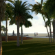 Palm Beach and Sea - VideoHive Item for Sale