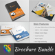 Corporate Brochure Bundle | Volume - 1 - GraphicRiver Item for Sale