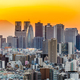 Tokyo Japan Cityscape - PhotoDune Item for Sale