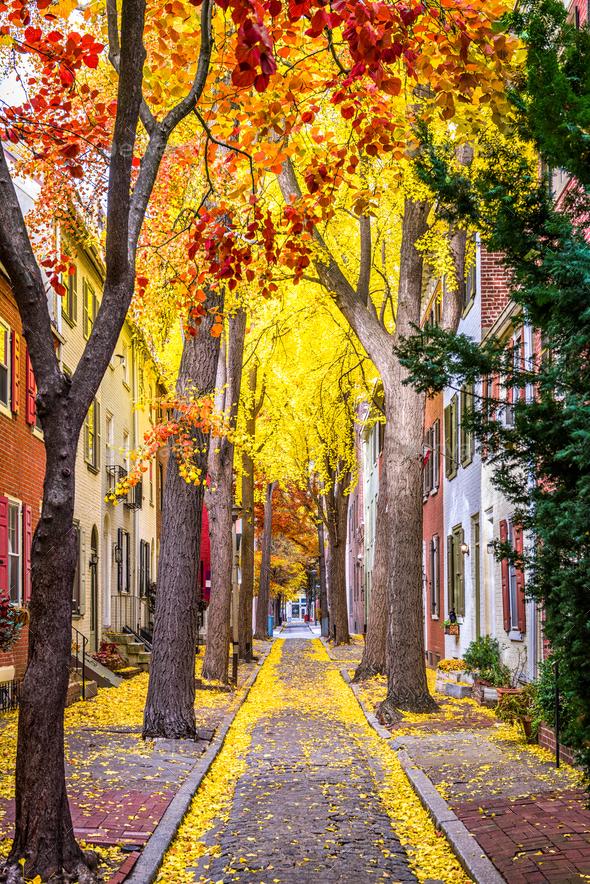 Philadelphia Autumn Streets - Stock Photo - Images