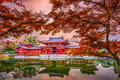 Byodoin Temple in Kyoto - PhotoDune Item for Sale