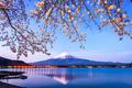 Mt. Fuji Spring - PhotoDune Item for Sale