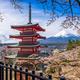Fuji and Pagoda - PhotoDune Item for Sale