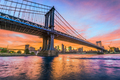 Manhattan Bridge New York City - PhotoDune Item for Sale