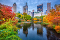 Central Park Autumn - PhotoDune Item for Sale