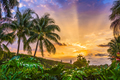 Florida, USA Sunrise - PhotoDune Item for Sale