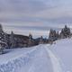 rustic road in winter - PhotoDune Item for Sale