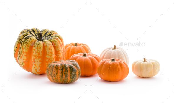 Pumpkins - Stock Photo - Images