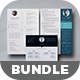 Bundle - Professional Resume Template / CV - GraphicRiver Item for Sale
