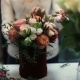 Young Female Florist Working at Counter in Flower Shop. - VideoHive Item for Sale